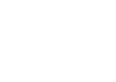 Mermaid & Guys